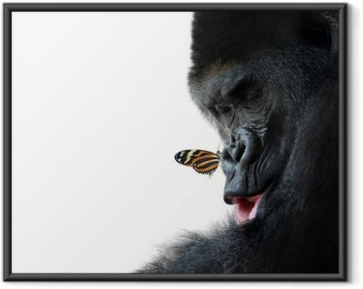 Poster en cadre Gorille et l'amitié des animaux papillon - Vie