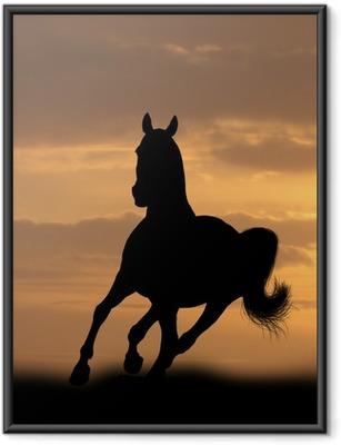 Gerahmtes Poster Pferd im Sonnenaufgang