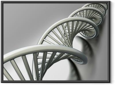 DNA Strang Framed Poster