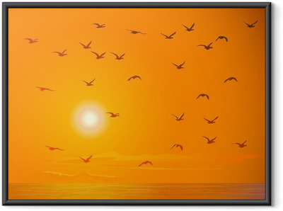 Flying birds against orange sunset. Framed Poster