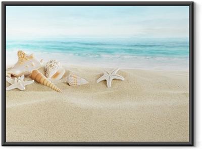 Ingelijste Poster Schelpen op zand strand