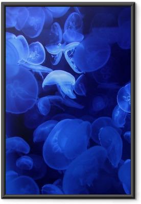 Plakát v rámu Medúza