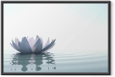 Zen flower loto in water Framed Poster