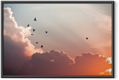 Birds above the clouds Framed Poster