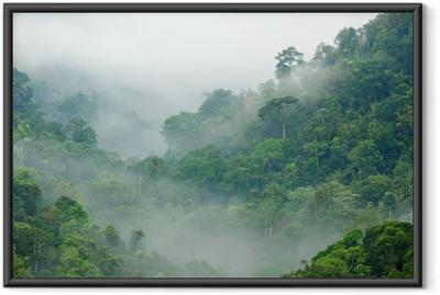 Gerahmtes Poster Morgennebel im Regenwald