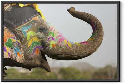 Decorated elephant at the elephant festival in Jaipur Framed Poster