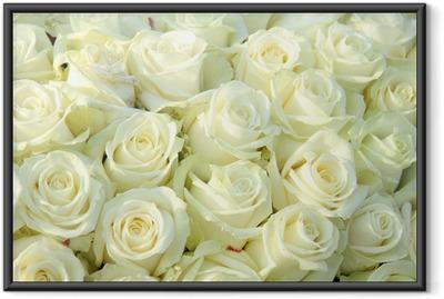 Poster en cadre Groupe de roses blanches, décorations de mariage