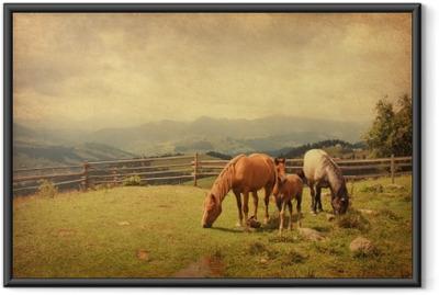 Gerahmtes Poster Zwei Pferde und Fohlen auf der Wiese. Papier Textur.