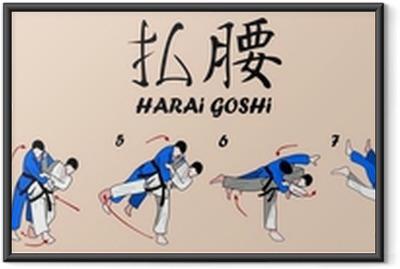 Poster in Cornice Judo marziale tecnica di arte