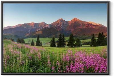 Poster en cadre Beauté panorama de montagne avec des fleurs - Slovaquie - Thèmes