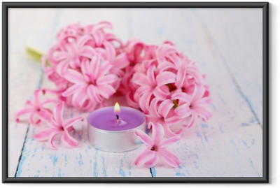 Pink hyacinth with candle on wooden background Framed Poster