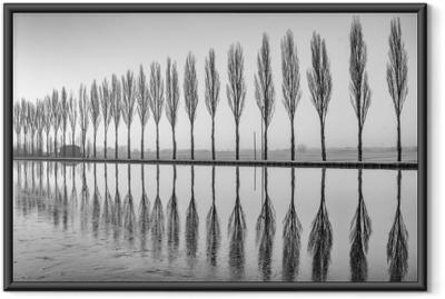 Çerçeveli Poster Alberi riflessi sul lago all'alba in bianco e nero