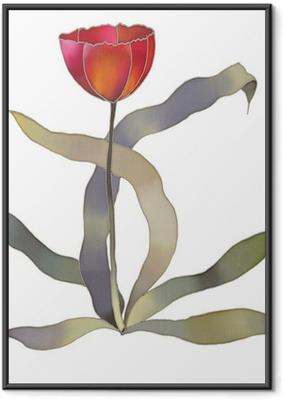 Poster in Cornice Tulipano rosso isolato su sfondo bianco