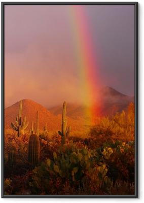 Plakat w ramie Rainbow słońca w Saguaro National Park, Arizona, USA