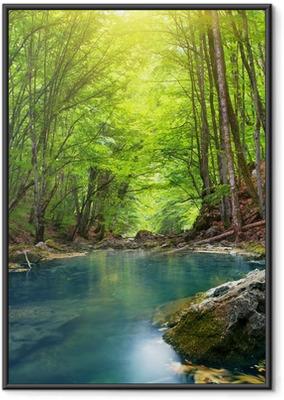 Flod i bjergskov. Indrammet plakat