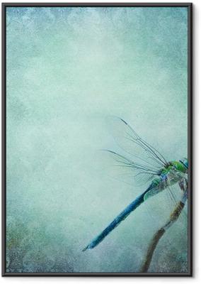 Poster en cadre Vintage background shabby chic avec libellule - Textures