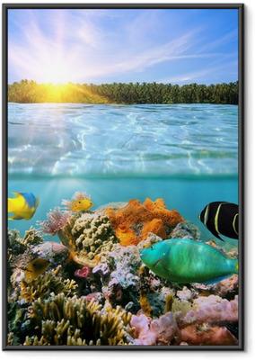 Solnedgang og farverigt undervands marine liv Indrammet plakat