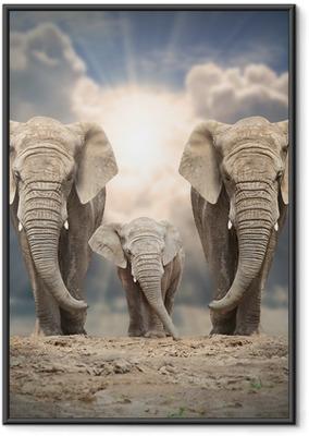 Afrikkalainen norsu perheen tiellä. Kehystetty juliste