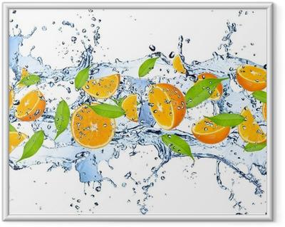 Poster en cadre Oranges fraîches dans les projections d'eau, isolé sur fond blanc