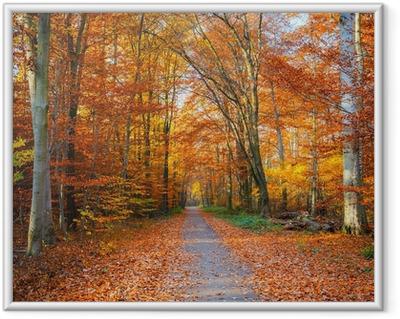 Reitti syksyllä metsään Kehystetty juliste