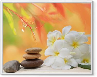 Zen kylpylä käsite tausta zen hieronta kivet kanssa frangipani plumeria kukka ja vesipisaroita luonto taustalla Kehystetty juliste