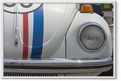 beetle Framed Poster