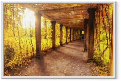Gerahmtes Poster Schöner Herbstpark