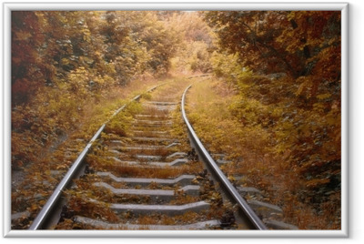 Railway track in autumn Framed Poster