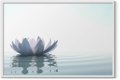 Plakat w ramie Zen kwiat loto w wodzie