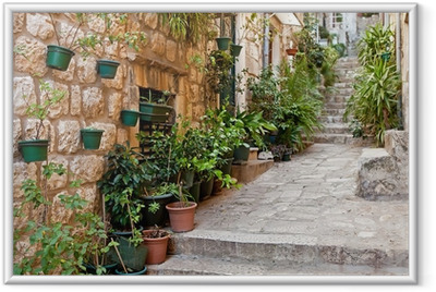 Narrow street with greenery in flower pots on the floor Framed Poster