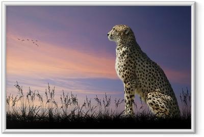 Gerahmtes Poster African Safari Konzept Bild des Geparden mit Blick auf savannn