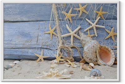 Urlaubserinnerung: Posthornschnecke, Seesterne und Fischernetz Indrammet plakat
