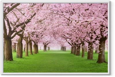 Ingelijste Poster Tuinen in volle bloei