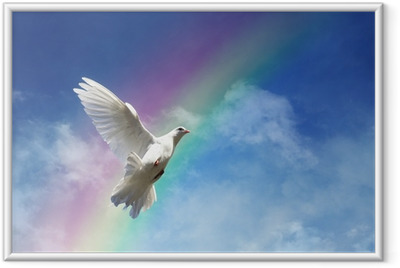 Freedom, peace and spirituality Framed Poster