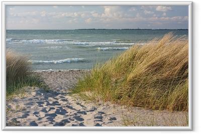 Gerahmtes Poster Dünenlandschaft am Strand der Ostsee bei Heiligenhafen