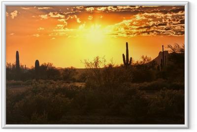 Gerahmtes Poster Schöner Sonnenuntergang Blick auf die Wüste von Arizona mit Kakteen