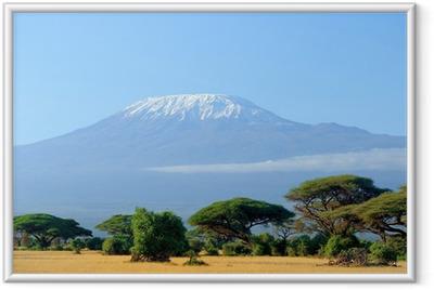Ingelijste Poster Sneeuw op de top van de Kilimanjaro