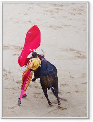 Traditional corrida - bullfighting in spain Framed Poster