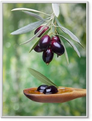 Plakat w ramie Oliwa z oliwek
