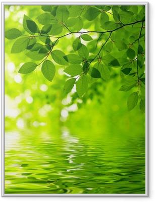 Green leaves Framed Poster