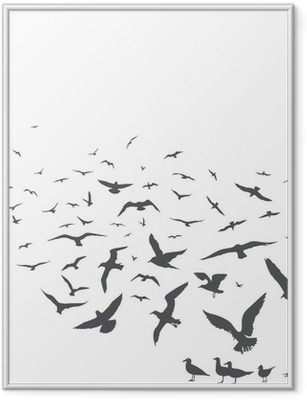 Ingelijste Poster Seagulls