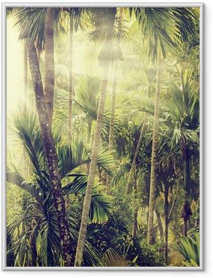 Ingelijste Poster Natuur-13