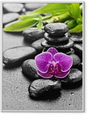 Poster en cadre Orchidée