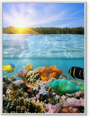 Poster en cadre Coucher de soleil et de la vie sous-marine colorée - Récif de corail