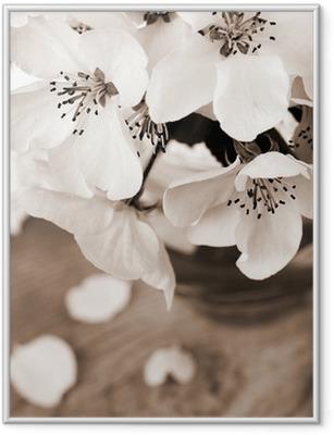 Flower of apple tree, processed in vintage sepia color Framed Poster