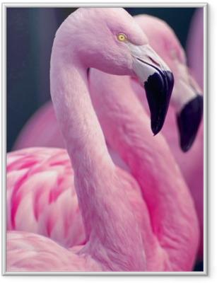 Plakat w ramie Różowe flamingi