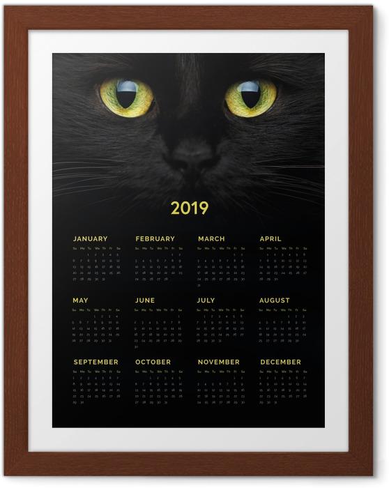 Plakát v rámu Kalendář 2019 - Černá kočka -