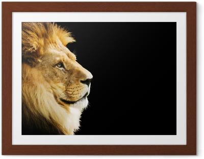 Poster in Cornice Ritratto del leone con copia spazio su sfondo nero