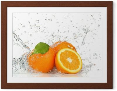 Oranssi hedelmiä ja roiskeita vettä Kehystetty juliste