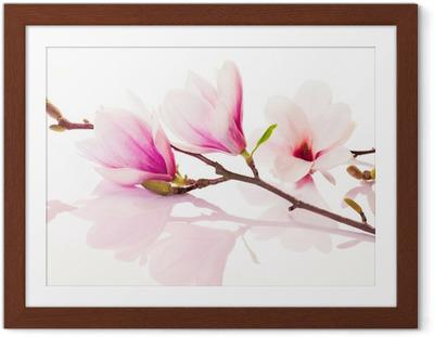 Çerçeveli Poster Yansıması ile pembe bahar çiçekleri
